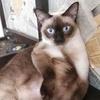 2170123246's profile photo