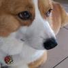 30308563113's profile photo