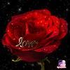 user6222187124719manchek - Madiha_03