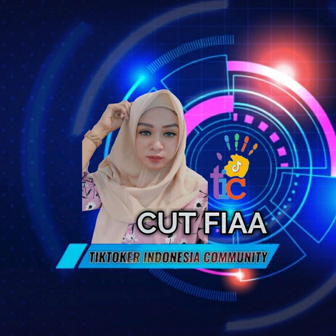 TIC_Cutfiaa - fhiia03