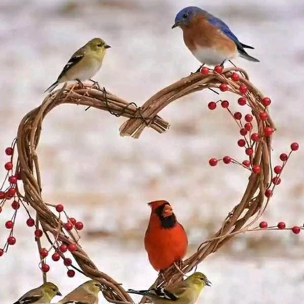 Vijay love  143 - 31869679001