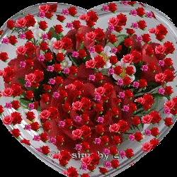 user5469502525415 - 31615858385