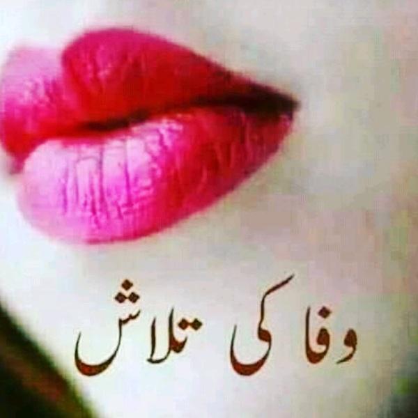 Ch Sadaqat Ali  - sadaqatsuccess