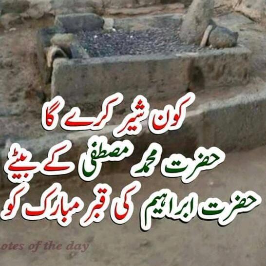 Muhammad Ali - user90534920