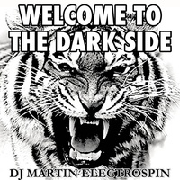 DJ Martin ElectroSpin - I'm Friends with the Monster
