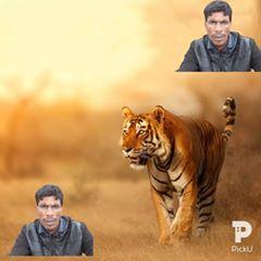 basheerahmed425 - Basheer Ahmed